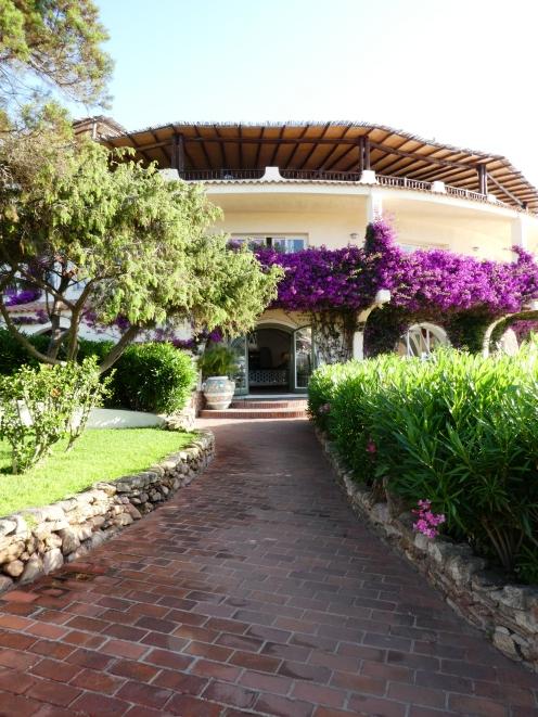 Bouganvilliea on Club hotel Baia Sardinia