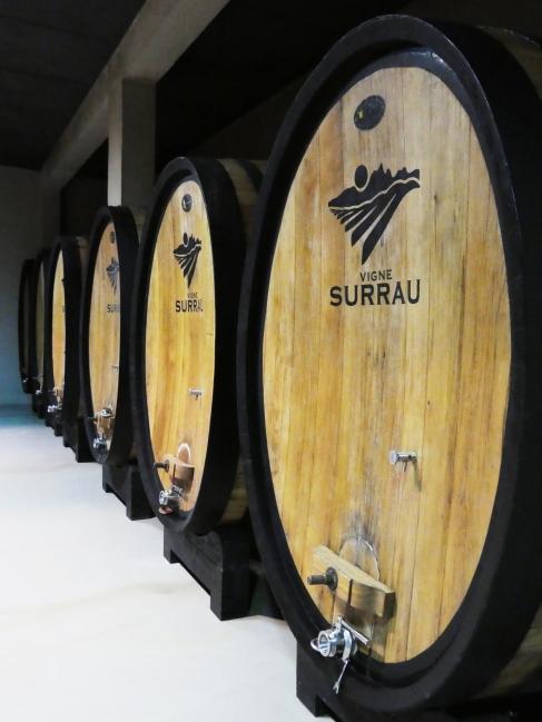 Barrels at Vigne Surrau
