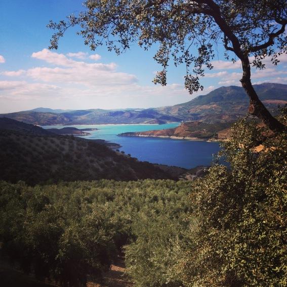 Beautiful wedding location in Andalucia